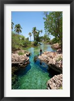 Framed Alligator Hole, Black River Town, Jamaica, Caribbean