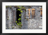 Framed Tropical Plants, St Pierre, Martinique, French Antilles, West Indies