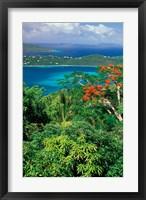 Framed Magens Bay, St Thomas, Caribbean