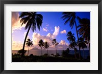 Framed Coastline, St Kitts