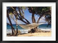 Framed Hammock tied between trees, North Shore beach, St Croix, US Virgin Islands