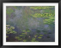 Framed Waterlilies (green with blue)