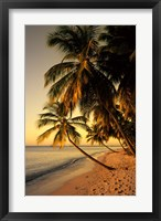 Framed Beach at Sunset, Trinidad, Caribbean