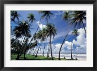 Framed View of Manzanilla Bay, Port of Spain, Trinidad, Caribbean