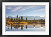 Framed Canada, Alberta, Jasper National Park Scenic of Cottonwood Slough