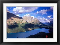 Framed Hiker Overlooking Peyto Lake, Banff National Park, Alberta, Canada