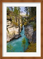 Framed Athabasca Falls, Jasper National Park, Alberta, Canada
