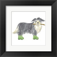 Framed Shaggy Dog I