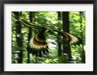 Framed Archaeopteryx flying through a forest