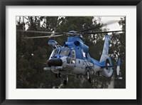 Framed AS-565 Atalef of the Israeli Air Force