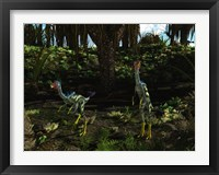 Framed Caudipteryx wander a prehistoric landscape