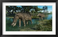 Framed pair of Platybelodon grazing in a shallow stream