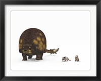 Framed Doedicurus glyptodont compared to modern armadillos