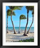 Framed Shoreside Retreat