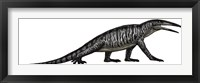 Framed Teraterpeton, an Archosauromorph from the Late Triassic
