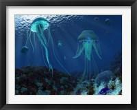 Framed Swarm of Jellyfish Swim the Panthalassic Ocean