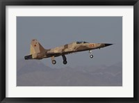 Framed F-5N Aggressor Aircraft of the US Marine Corps