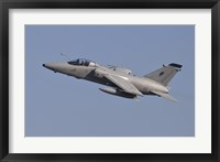 Framed Italian Air Force AMX Aircraft Taking Off