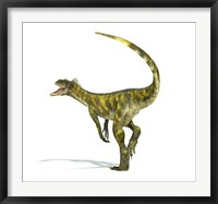 Framed Herrerasaurus dinosaur on white background
