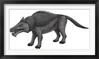 Framed Andrewsarchus, an Ungulate Mammal from the Eocene Epoch