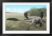 Framed Two Dromaeosaurus Dinosaurs Sunbathing in the Cretaceous Period