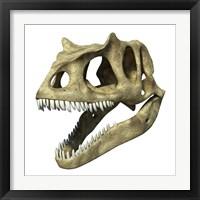 Framed 3D Rendering of an Allosaurus Skull