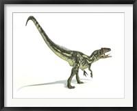 Framed Allosaurus Dinosaur