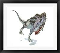 Framed Majungasaurus Dinosaur on White Background