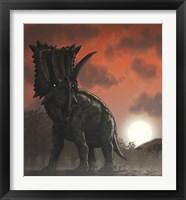 Framed Coahuilaceratops Walking through a Cretaceous Sunset