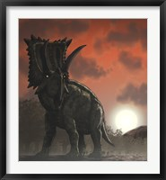Framed Coahuilaceratops Walking through a Cretaceous Sunset