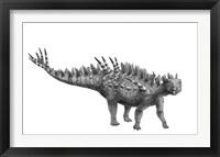Framed Pencil Drawing of Huayangosaurus Taibaii