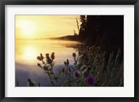 Framed Lac Lejuene, Kamloops, British Columbia, Canada