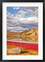 Framed Grassland landscape, Lac Du Bois Grasslands Park, Kamloops, BC, Canada