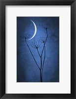 Framed Blue Crescent Moon