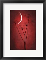 Framed Red Crescent Moon