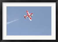 Framed Snowbirds 431 Air doing a Demonstration