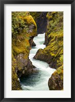 Framed River, Vancouver Island, British Columbia