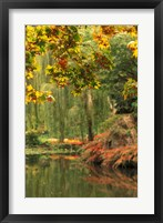 Framed Colorful Fall Leaves at Butchart Gardens, Victoria, British Columbia, Canada