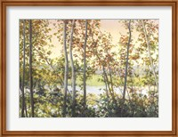 Framed Autumn Shady