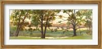Framed Mill Stream Willows