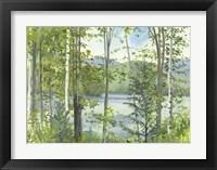 Framed Summer Lake IV