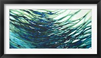 Framed Underwater Reflections