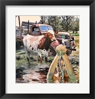 Framed Steer and Old Truck in Terrebonne
