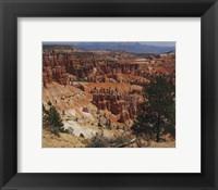 Framed Bryce Canyon National Park, Utah