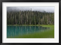 Framed Blue glacial lake, evergreen forest, British Columbia