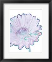 Framed Violet Zen 2