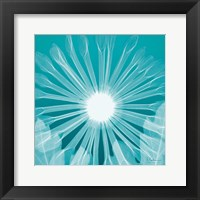 Framed Chrysanthemum Teal