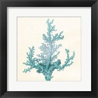 Blue Beach II Framed Print
