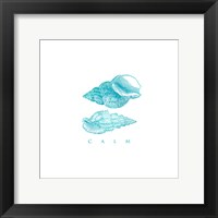 Calm Shells Framed Print