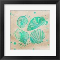 Splat Shells on Sand II Framed Print